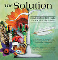 The Solution/Kate Birch / Cilla Whatcott